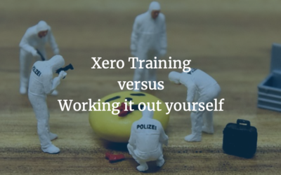 What do you really get from Xero training versus working it out yourself?